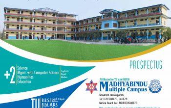 Madhyabindu Brouscher 1