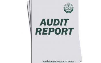 Audit Reporta